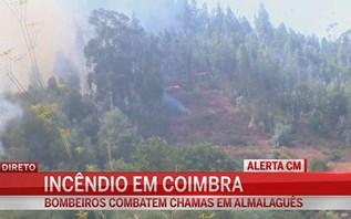 Bombeiros combatem as chamas em Coimbra