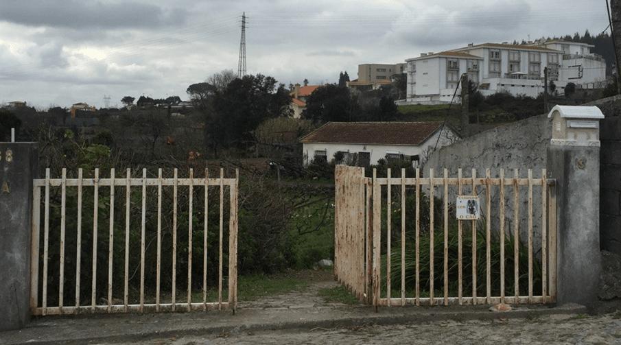 Paredes: Homem morre em ataque do cão da família