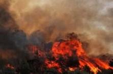 Fogo no concelho de Sintra mobiliza 307 bombeiros