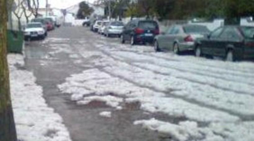 Benfica: Pedidos de ajuda devido ao mau tempo