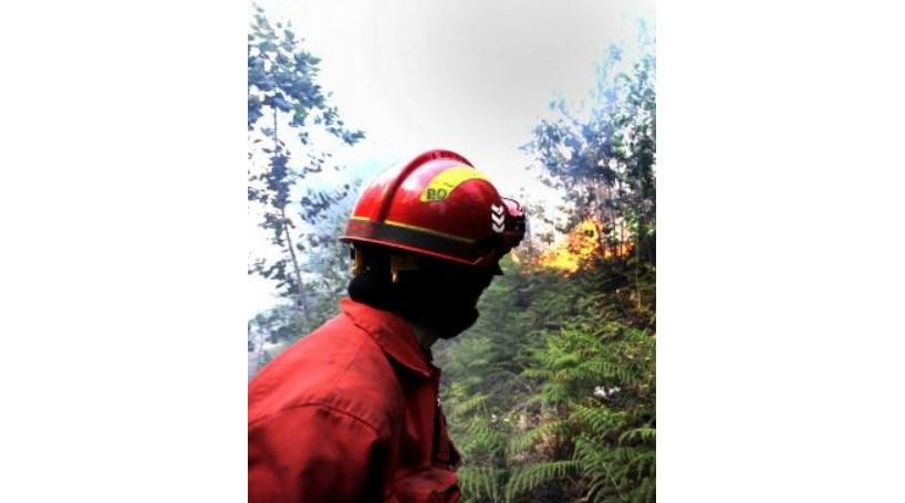 Cantanhede: Incêndio combatido por 124 bombeiros