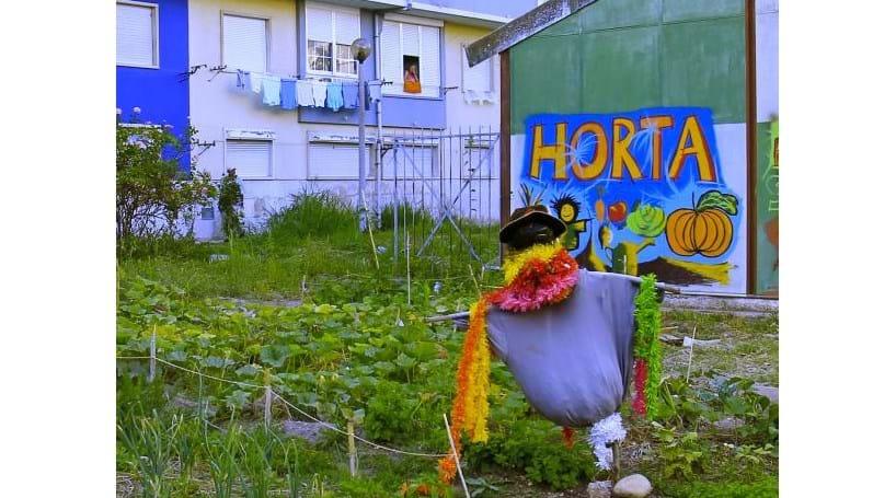 Moradores da Damaia defendem horta biológica