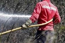 Dois incêndios em Sintra mobilizam 50 bombeiros