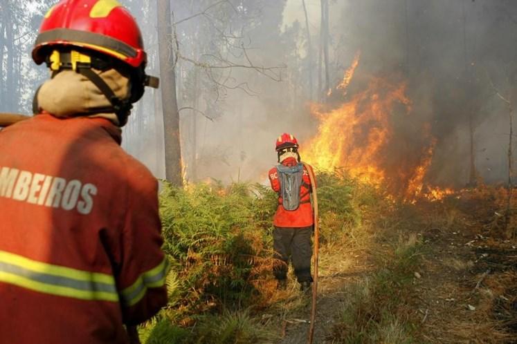 Resultado de imagem para Incêndios: 39 concelhos de sete distritos do país em risco 'máximo'