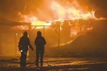 Cinco concelhos do distrito de Faro em risco muito elevado de incêndio