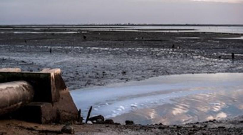 Esgotos de Olhão ameaçam ria Formosa