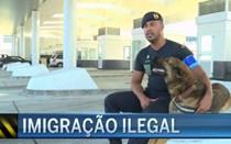 Imigração ilegal: GNR participa na missão 'Minerva'