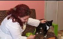 Associação em Alverca dá abrigo a animais abandonados