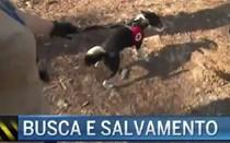 Busca e salvamento em Sintra