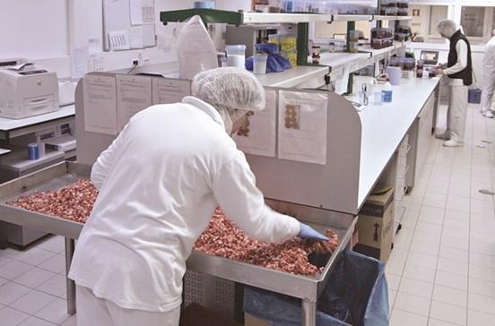 Frulact: Fábricas em quatro países