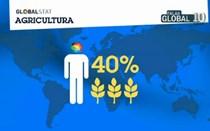 Menos de 40% da área terrestre é dedicada à agricultura