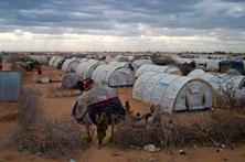 """ACNUR chocado com distribuição de """"spray"""" contra migrantes"""