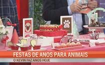 Festas para animais
