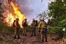 Madeira vai precisar de 157 milhões devido aos incêndios
