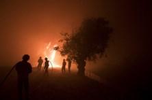 Seis feridos no fogo de Abrantes e Sardoal