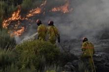 Centenas de bombeiros combatem fogo na Guarda