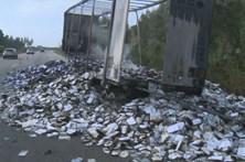 Camião incendiou-se na A1