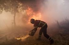 PJ deteve autor de mais de 30 de fogos em Trancoso