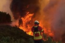 Fogo na Sertã em fase de rescaldo