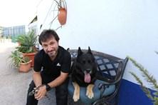 """""""Os cães são os que mais me têm ensinado"""""""