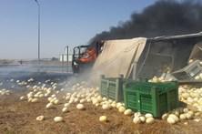 Camião pega fogo depois de se despistar