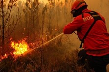 PJ apanha suspeito de atear fogo em Viseu