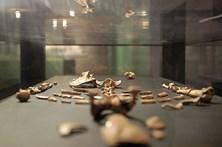 Antepassada hominídea Lucy morreu ao cair de árvore