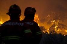 Dois bombeiros feridos em fogo em Mação