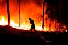 Dois fogos em Vila Verde mobilizam mais de 200 bombeiros