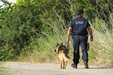 Homem de 33 anos desaparecido em Sines