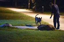 Explosão e tiroteio na Suécia