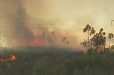 Incêndio coloca casas em risco no Algarve