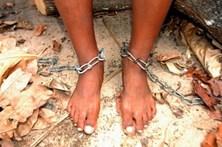 Sete pessoas libertadas de trabalho escravo em Trás-os-Montes