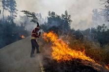 Incêndio consome mato à entrada de Santarém