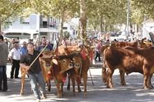 Vacada atrai milhares a mais uma Feira Grande