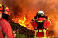 Fogos em Pombal e Sernancelhe mobilizam quase 200 bombeiros