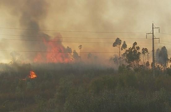 Incêndio no Algarve colocou várias habitações em risco