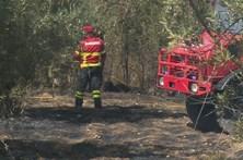 Encontrado ferido com queimaduras graves em Penela