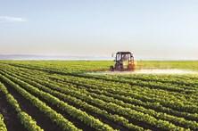 Governo quer mais 2 mil jovens na agricultura