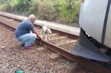 Maquinista salva cadela amarrada nos carris do metro