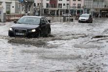 Queda de árvores e inundações em Faro