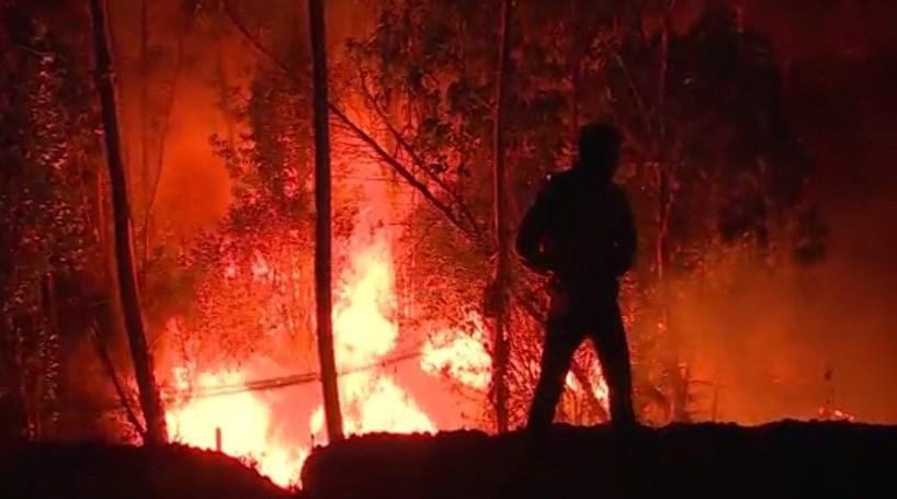 Proteção Civil faz balanço do pior ano da última década em área ardida