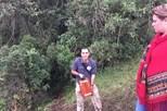 Encontradas caixas negras do avião que se despenhou na Colômbia