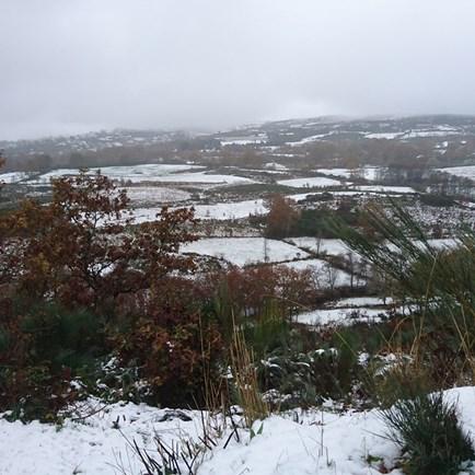 Lamego cobeto de neve