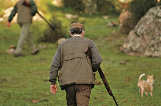 Explosivo fere mãos a caçadores