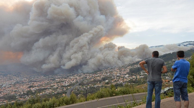 30% dos afetados pelos incêndios na Madeira excluídos de apoios
