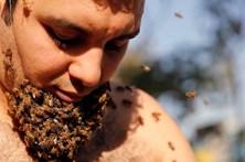 Apicultor egípcio deixa crescer 'barba de abelhas'