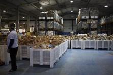 Banco Alimentar do Porto recolheu 400 toneladas de doações