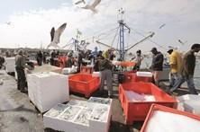 Algarve tem o peixe mais caro do País