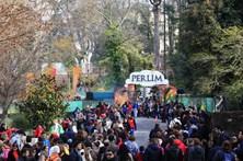 Parque Natal de Santa Maria da Feira abre com lotação esgotada